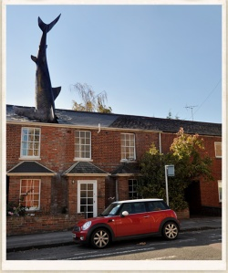 headington-shark-ful
